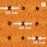 sub-50 nm DPN regime: charged thiol molecules on gold (LFM scan)