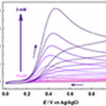Cyclic voltammograms for different ascorbate concentrations at glassy carbon electrode modified with graphene layer  Indicative price: 10 graphene fructose sensors @ 3000 EUR ~ 5 weeks of work